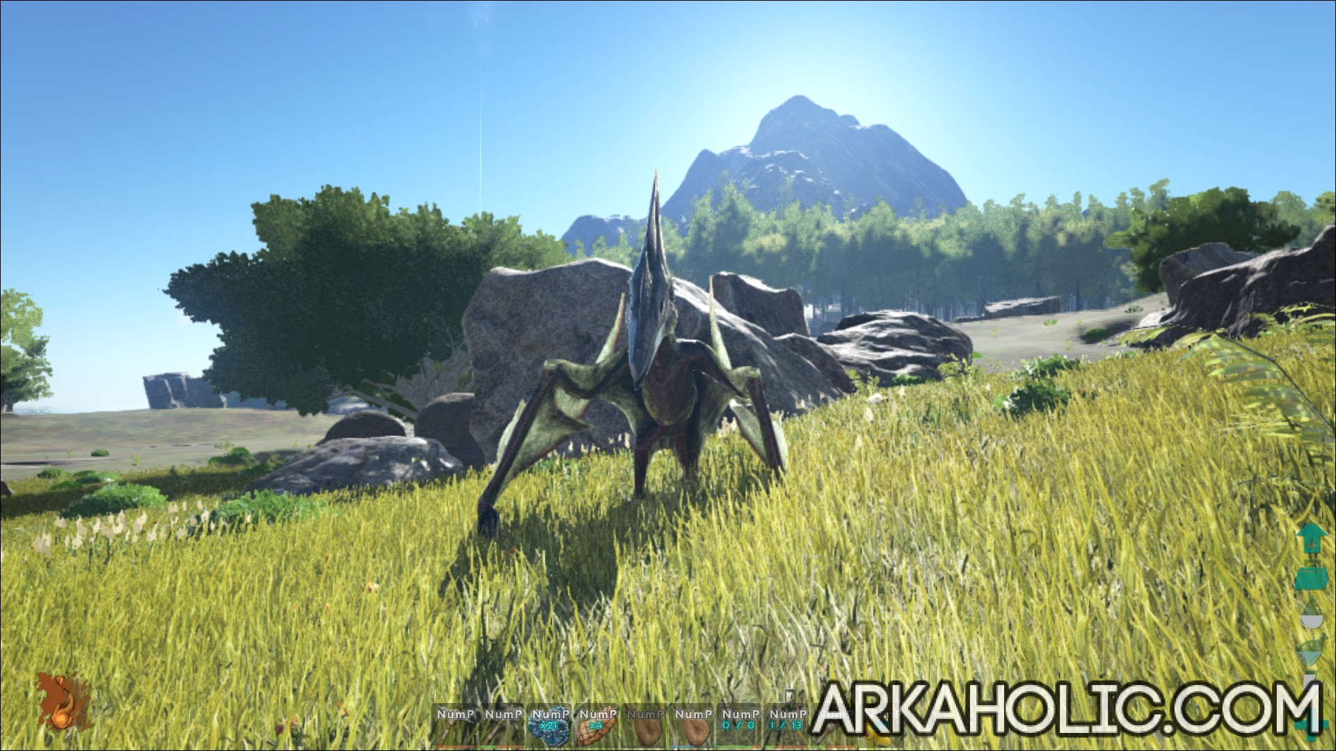 pteranodon dino dossier guide ark survival evolved