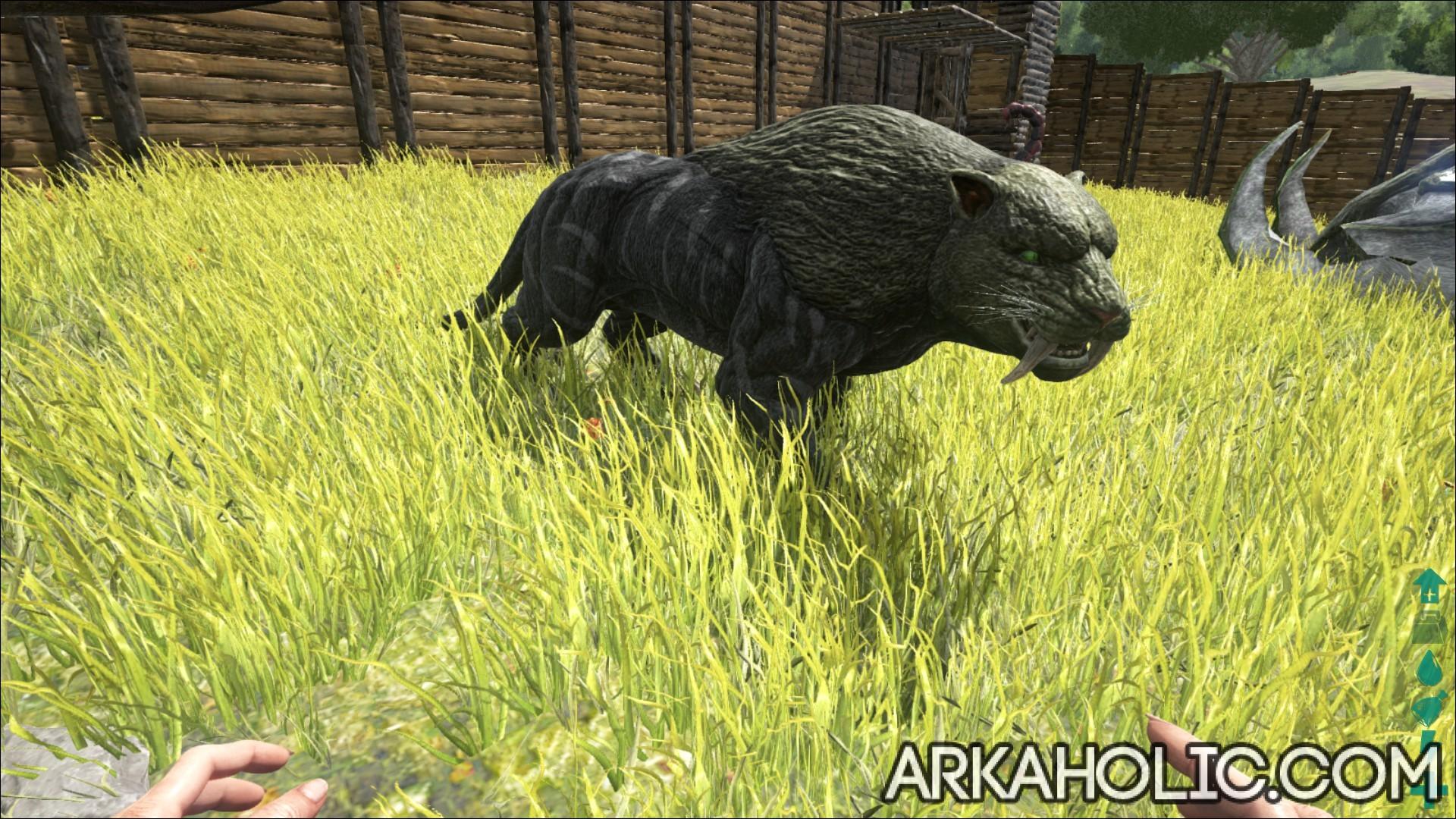 Ark Sabertooth