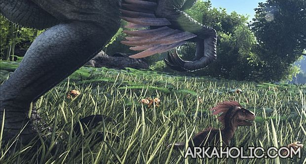 ark-survival-breeding-guide-baby-dinosaur