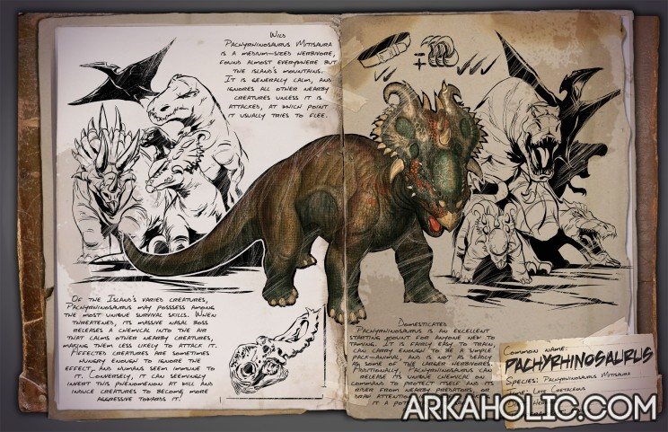 pachyrhinosaurus dossier