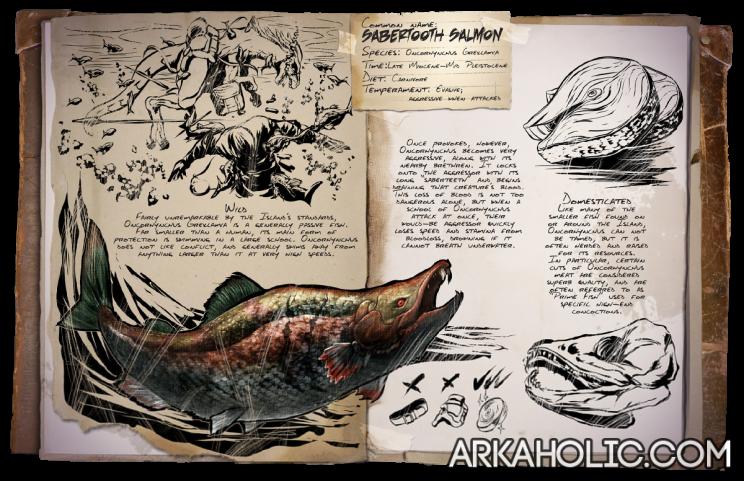 salmon dossier